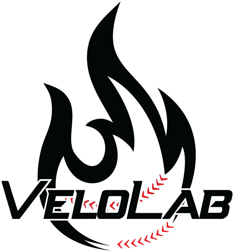 velolab-black-with-white-outline.png